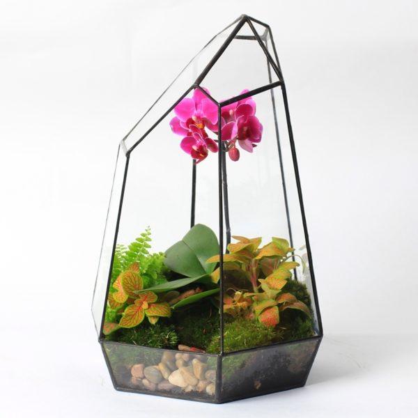 """Флорариум """"Орхидея"""" (30 см)"""