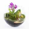 """Флорариум """"Сад орхидей"""""""