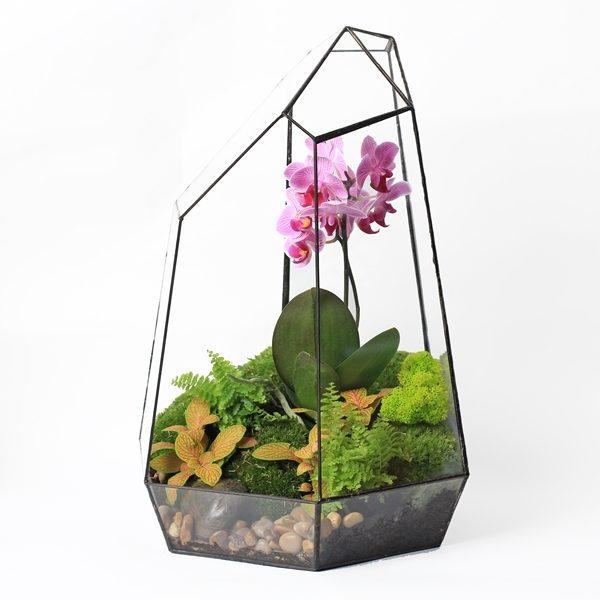 """Флорариум """"Орхидея"""" (40 см)"""