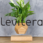 Levitera
